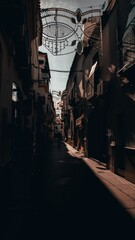 Canvas Prints Narrow alley Vertical shot of a narrow alley in an atmospheric city