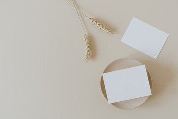 Blank paper sheet cards with mockup copy space and wheat / rye stalks on beige background. Minimal...