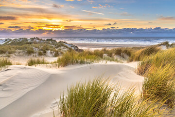 Wall Mural - View from dune top over North Sea