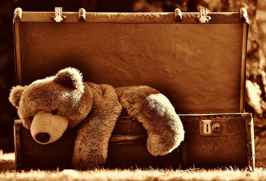 old teddy bear on old suitcase