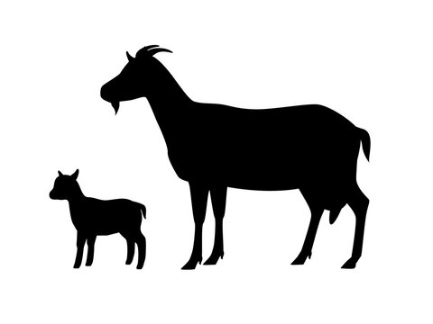 Vector illustration of goat with young goatling. Silhouettes of farm animals, domestic small cattle adult and young.