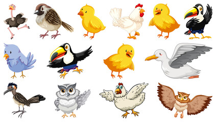 Wall Murals Birds, bees Set of different birds cartoon style isolated on white background
