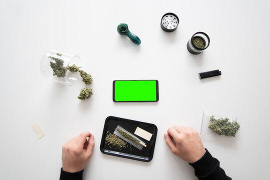 Smartphone mockup Green screen. The sugar pot leaves on buds. Marijuana nature. Mans hands marijuana bud. cannabis buds