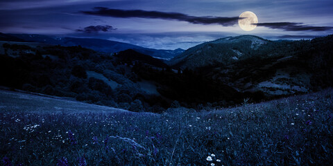 summer landscape in mountains at night. amazing scenery with herbs in fields on rolling hills in full moon light. clouds on the blue sky above the distant ridge