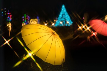 山中湖花の都公園のライトアップイルミネーション