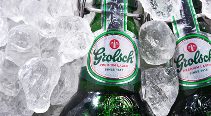 Bottles of Grolsch beer in crushed ice
