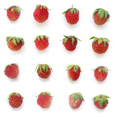 Fototapete - Wild strawberry isolated on a white background, top view.