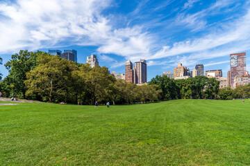 Fototapeta Central park at sunny day, New York City