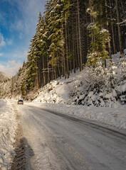 Mountain road in the Carpathians. Ukraine.