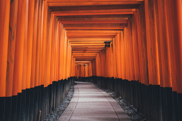 Empty Footpath At Torii Gate