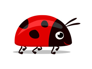 sweet little red lady bug vector illustration