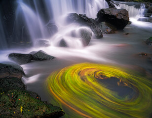 Waterfall smooth silky water looks from long exposure shot with green plant radial motion blur