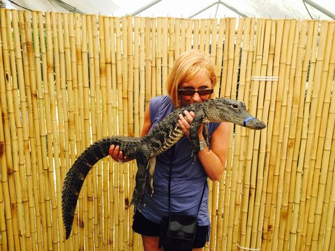 Woman Holding Alligator Against Fence
