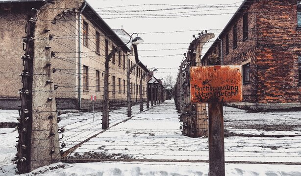 Abandoned Signboard And Buildings During Winter