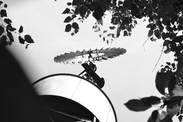 Foto auf Acrylglas Schmetterlinge im Grunge black and white Windmill