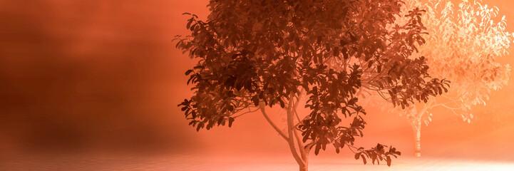Photo sur Aluminium Rouge traffic almond trees