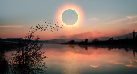 Wall Mural - Birds silhouettes flying above the lake against solar eclipse