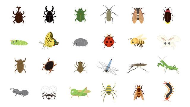 かわいい昆虫のイラストセット