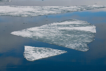 Ice sheet floating on water surface in sea