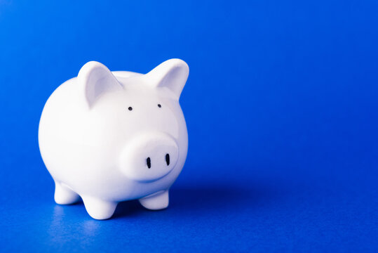 Front small white fat piggy bank, studio shot isolated on dark blue background and copy space for use, Finance, deposit saving money concept
