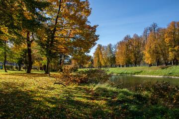 Fototapeta Jesień nad brzegiem rzeki, Olza, na granicy Cieszyna i Czeskiego Cieszyna obraz
