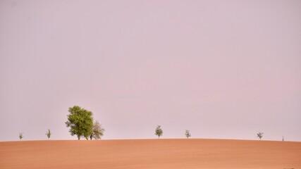 Fototapeten Rosa hell Scenic View Of Landscape Against Clear Sky