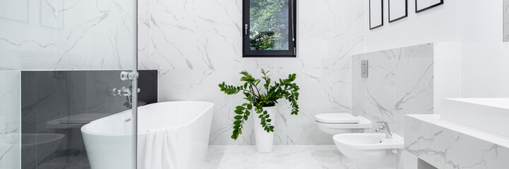 Elegant bathroom in white marble, panorama