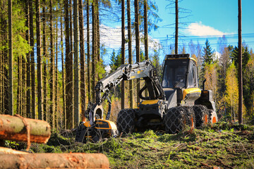 Ponsse Ergo Forest Harvester on Logging Site. Illustrative Editorial Content.