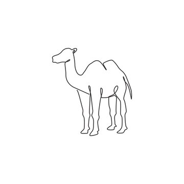 One continuous line drawing of Arabian desert camel for livestock business logo identity. Dromedary animal concept for middle east countries zoo icon. Single line draw design vector illustration