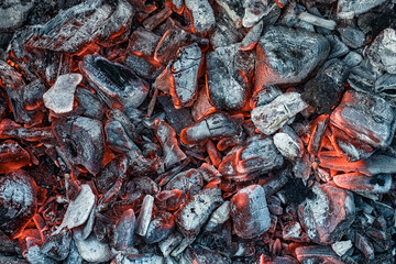 Fotobehang Brandhout textuur Embers.