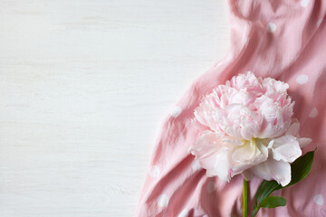 Pink peony and cotton polka dot fabric on a white wooden background, space for text