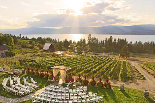 Wedding in the winery. Beautiful romantic set up. Decorated chairs and wedding arbor in front of vineyards by Okanagan lake in Kelowna. The sun shining through clouds during sunset in the background.