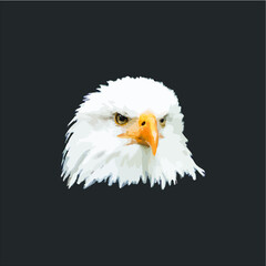 Gift Idea Eagle Photo Bald Eagle design vector illustrator art new
