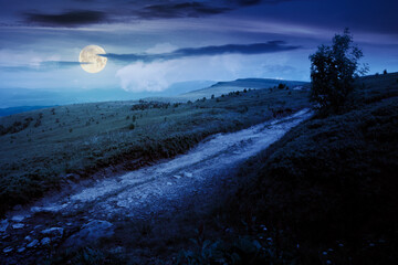 mountain road through grassy meadow at night. wonderful summer adventure in full moon light. clouds on the blue sky
