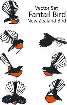 set of fantail birds,new zealand bird