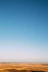 Minimal image of large orange field with day moon in the sky