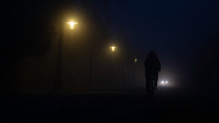 Fotomurales - Rear View Of Silhouette Of Dark Bicycle Without Lights On Illuminated Street At Night