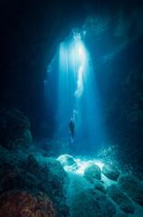 Obraz Person Swimming In Sea - fototapety do salonu