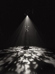 Fototapeta Shadow Of Illuminated Lights On Floor. obraz