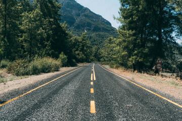 Fotomurales - Rear View Of Man On Road