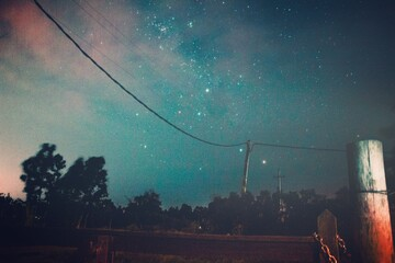 Fotomurales - Long Exposure Shot At Night With Stars And Trees