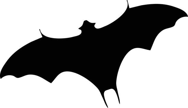 Black Bat Flying