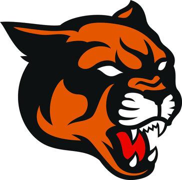 Head of Roaring Aggressive Cougar Mountain Lion Vector Design