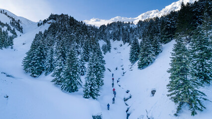 winter sports activities in the mysterious forests and mountains in Turkey