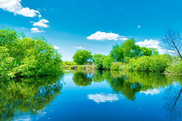 River landscape and green forest with trees blue water clouds on sky