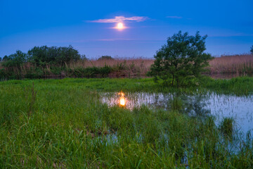 Blue lake landscape at night with full moon on blue dark sky