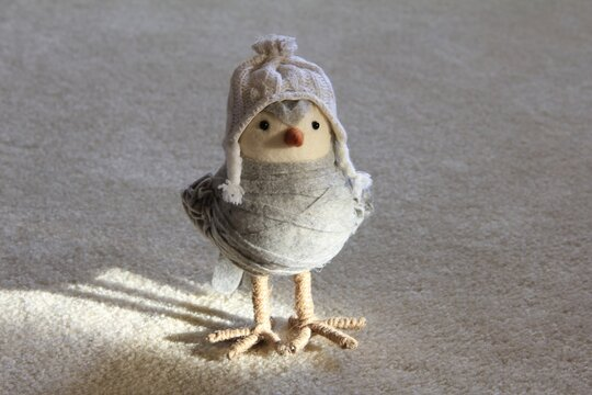 bird wrapped in towel