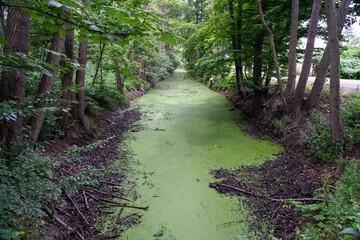 Wasserkanal Moritzburg