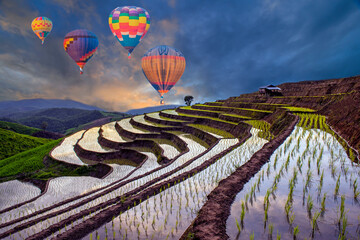 Hot Air Balloons of Pa Bong Piang terraced rice fields in sunset, Mae Chaem Chiang Mai in Thailand.