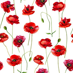 Watercolor scarlet poppies seamless pattern on a white background.